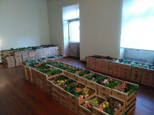 Šíření ošklivého ovoce proti plýtvání potravinami – Portugalsko