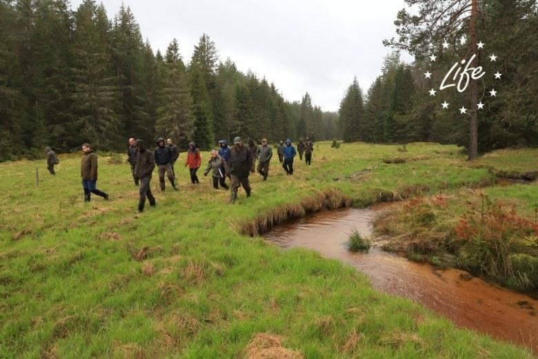 Projekt LIFE for Mires – Spolupracujeme s lesníky a vodohospodáři