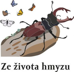 Vzácným druhům hmyzu v Bílých Karpatech a Beskydech pomáhají pily, kosy a ovce