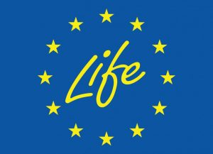 Evropská komise vyhlásí první výzvy k podávání návrhů v červenci 2021